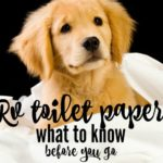 Do I really need to use RV Toilet Paper in my RV? Everything you need to know about RV Toilet paper from Roadtrip Republic